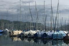 La marina à Lucerne