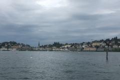 1-Lucerne