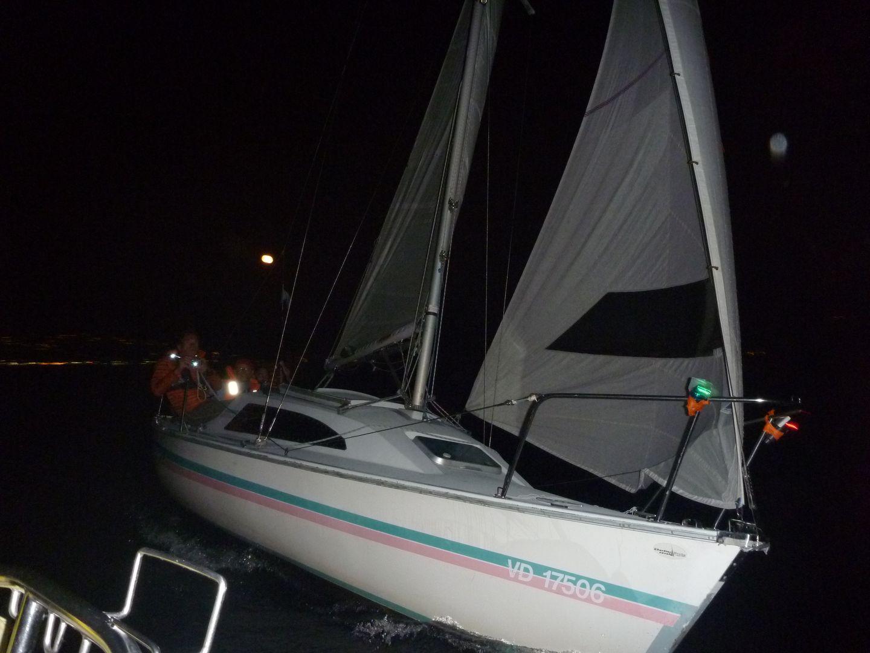 40-AnP1290950