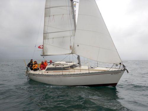 Radjah 2016-08 20 sailcom
